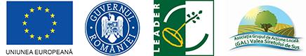 Asociatia Grupul de Actiune Locala (GAL)